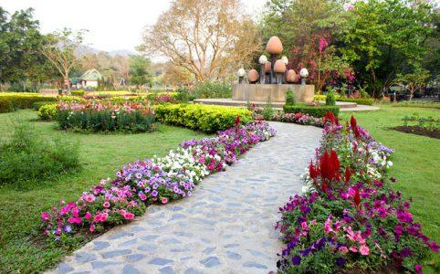 Garden+Landscaping